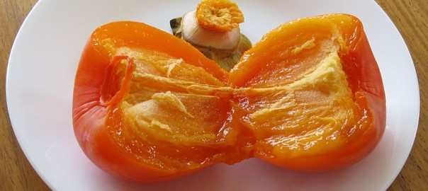 can guinea pigs eat american persimmons